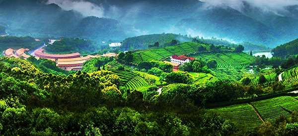 乡村旅游文化如何提炼-旅游规划