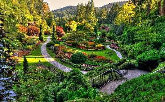 花卉主题景区规划设计