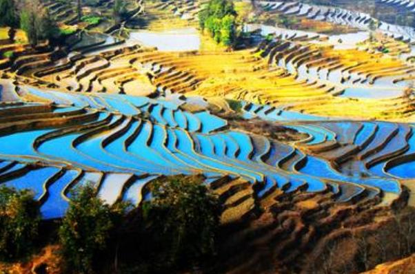农田景观创意规划