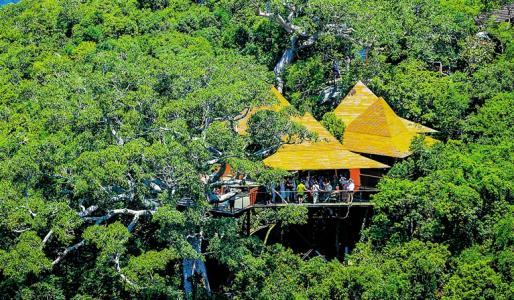 森林旅游规划设计