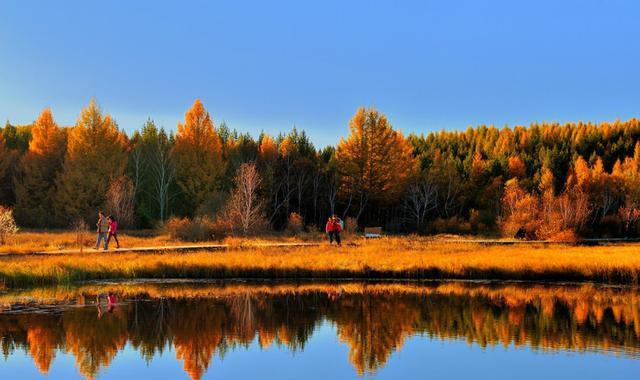 森林公园设计中,不同类型休憩环境的设计对策