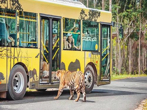 规划设计动物园